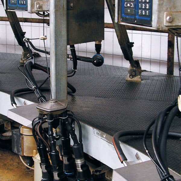 Kraiburg KURA rubber flooring installed in a rotary milking parlor.