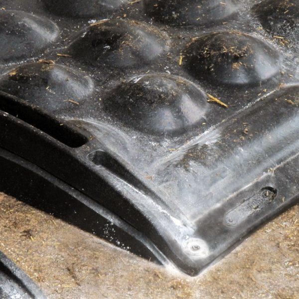 KRAIBURG POLSTA mat in deep bedded stall