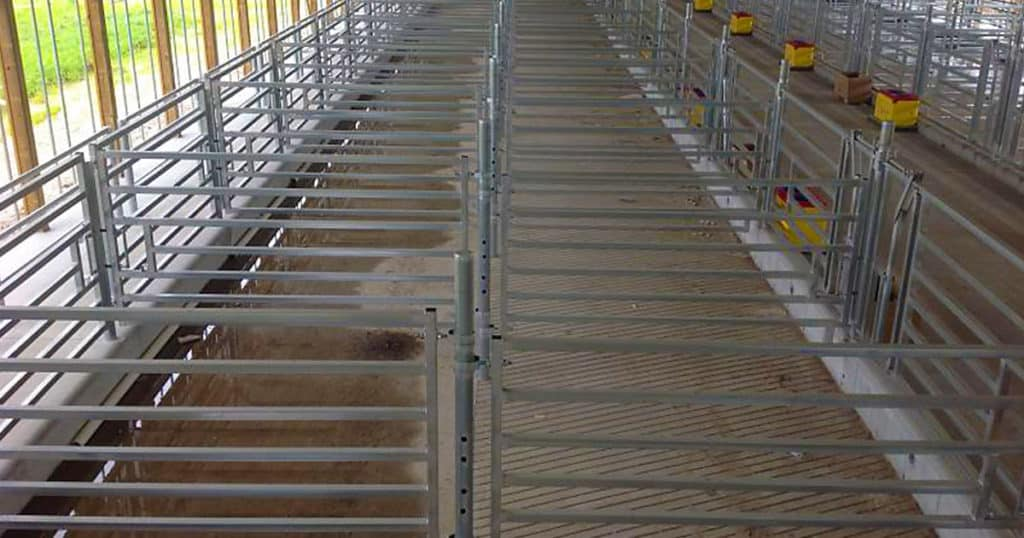 Sexing Technologies - Custom Bull Gates, Headlocks & Curtains.