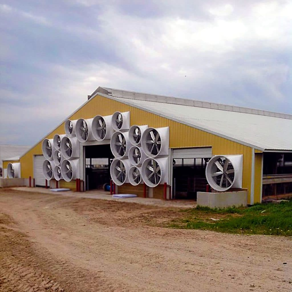 "55 and 72"" Exhaust fans for tunnel ventilation on a dairy farm."