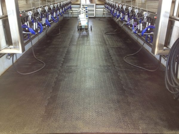 Agromatic PASEO in parlor pit.