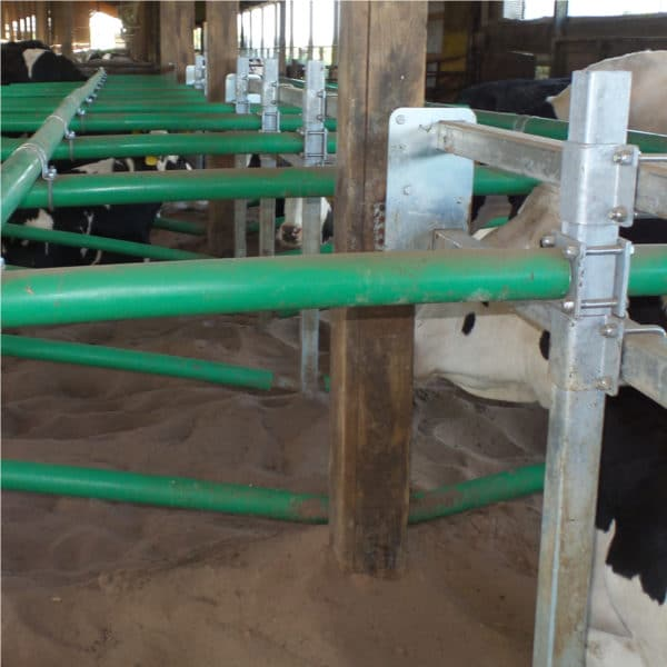 Agromatic Elevated Twin Beam Freestall System