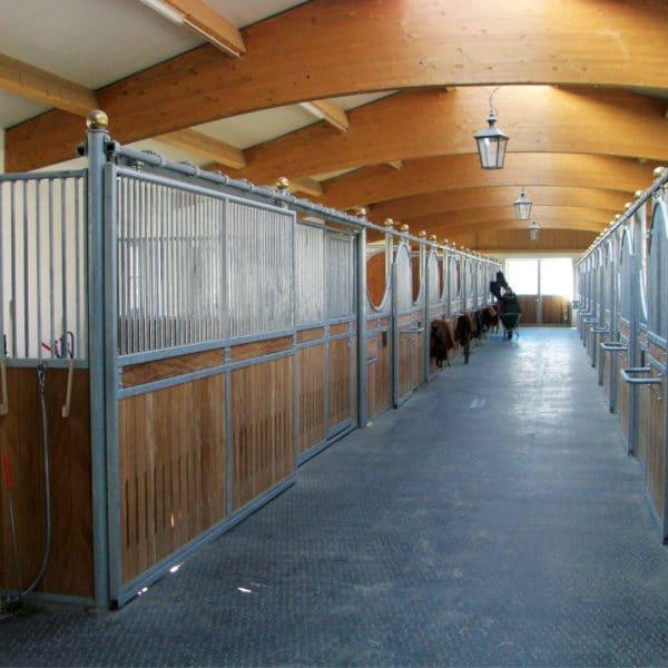 BELMONDO Horse Mats in Walkway