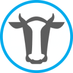 Agro Air Dynamics dairy cow icon.