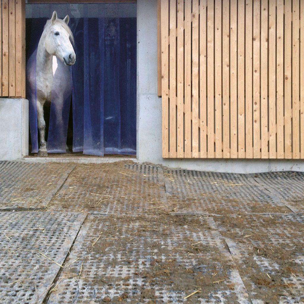 BELMONDO Flix Horse Mat