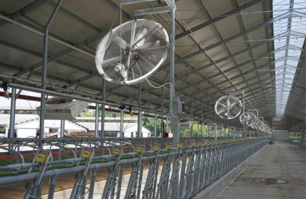 Agro Air Dynamics Panel Fans in barn