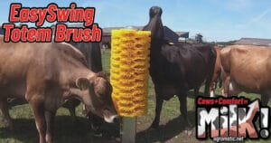 Agromatic EasySwing Totem Brush: Scratching post for cows.